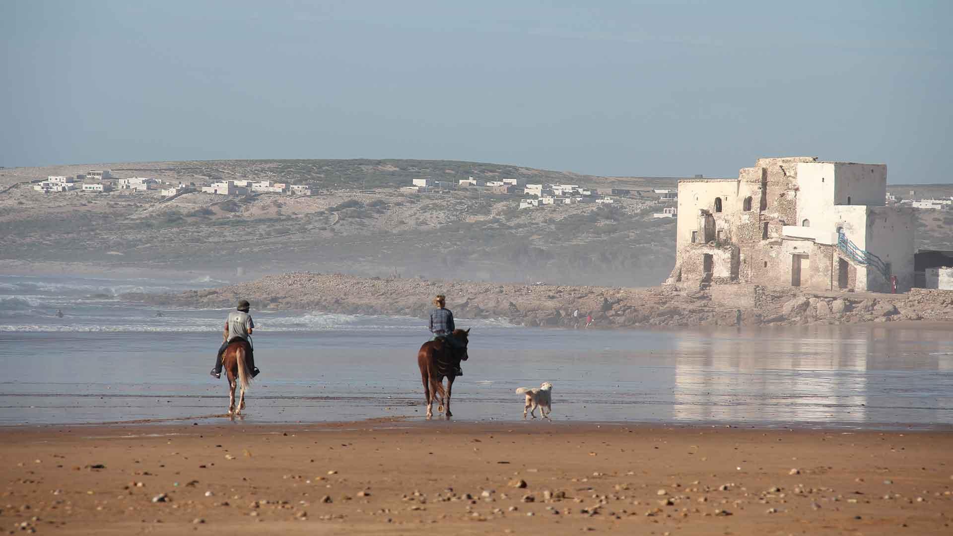 Cheval à Sidi Kaouki